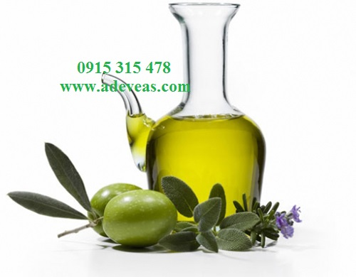 Dầu Oliu - Olive Basic Oil